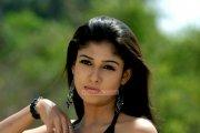 Malayalam Actress Nayantara Photos 5301