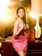Actress Nayantara 548