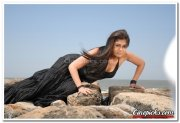 Actress Nayantara Photos 2