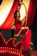 Actress Nayanthara Photos 9522