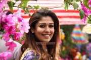 Nayanthara Malayalam Actress Latest Pic 2771