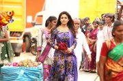 Nayanthara South Actress Mar 2016 Photo 131
