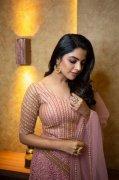 Malayalam Heroine Nikhila Vimal 2020 Wallpapers 5208
