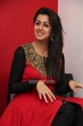 2015 Image Film Actress Nikki Galrani 4341