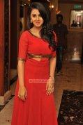 2015 Photos Nikki Galrani Malayalam Movie Actress 193