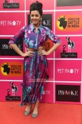 2016 Image Nikki Galrani Movie Actress 8700