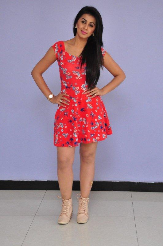 2020 Gallery Nikki Galrani Actress 6816