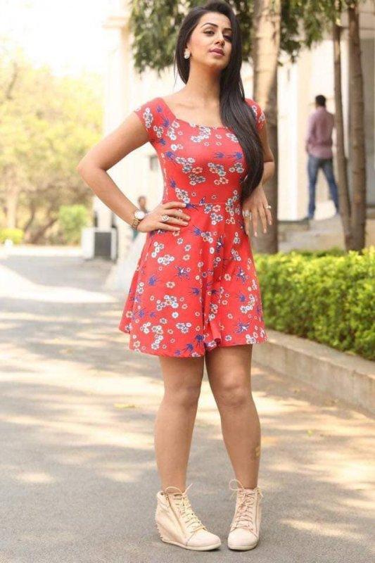 Album Nikki Galrani Film Actress 9730