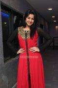 Cinema Actress Nikki Galrani Jan 2015 Album 1484