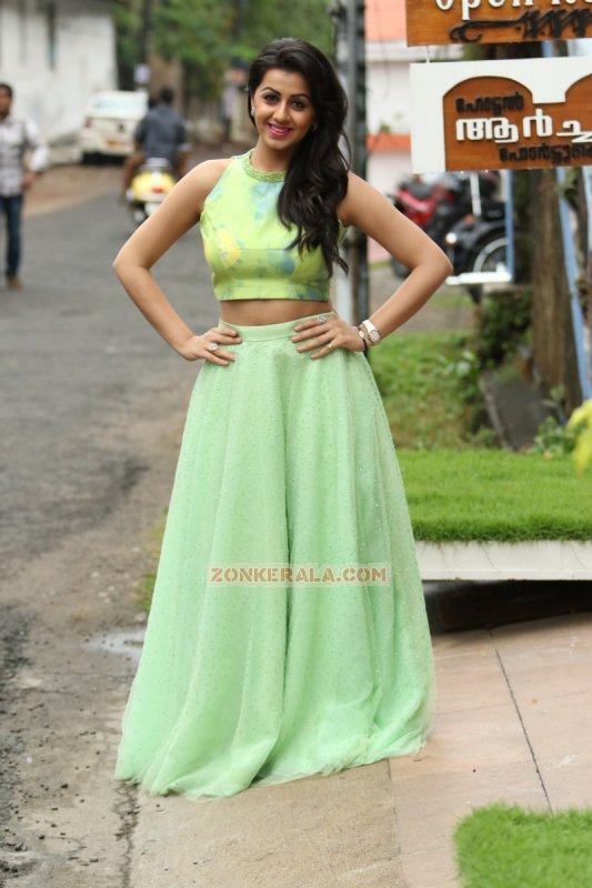 Cinema Actress Nikki Galrani Recent Albums 4429