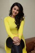 Film Actress Nikki Galrani 2016 Pics 7231