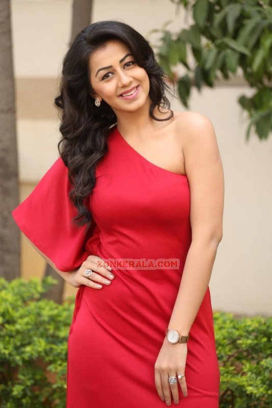 Gallery Actress Nikki Galrani 818