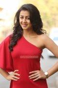 Indian Actress Nikki Galrani 2016 Wallpapers 5624