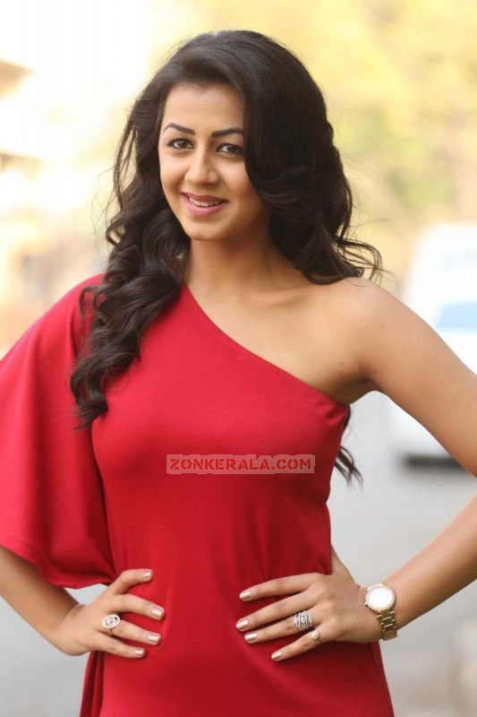 Indian Actress Nikki Galrani 2016 Wallpapers 5624