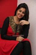 Jan 2015 Image Nikki Galrani Heroine 6879