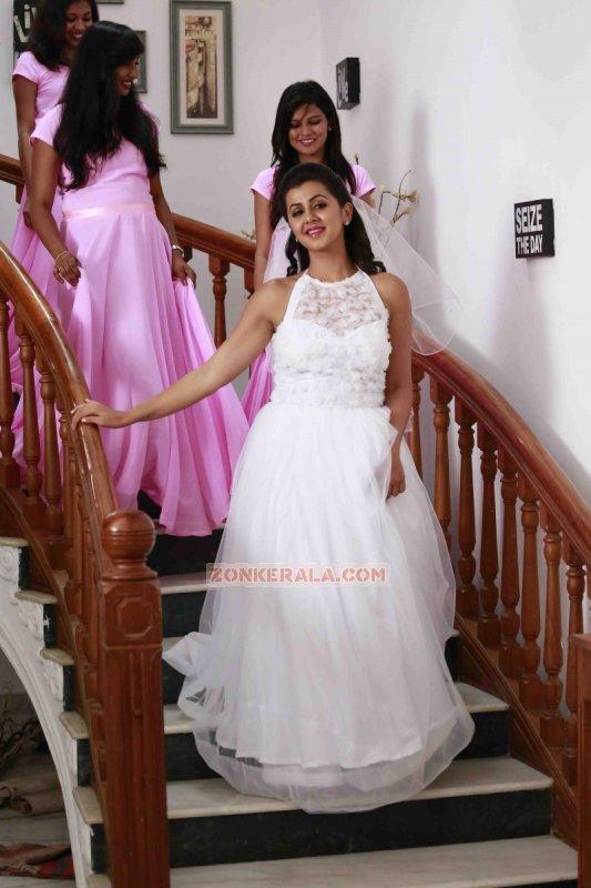 Jul 2017 Album Malayalam Movie Actress Nikki Galrani 3529