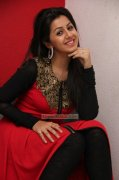 Latest Photos Malayalam Heroine Nikki Galrani 4894