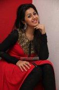 Latest Photos Malayalam Heroine Nikki Galrani 4894
