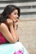 Malayalam Actress Nikki Galrani New Pic 653