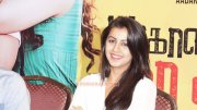 Malayalam Heroine Nikki Galrani Jun 2015 Photos 6160
