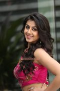 Mar 2016 Wallpapers Nikki Galrani Cinema Actress 9567