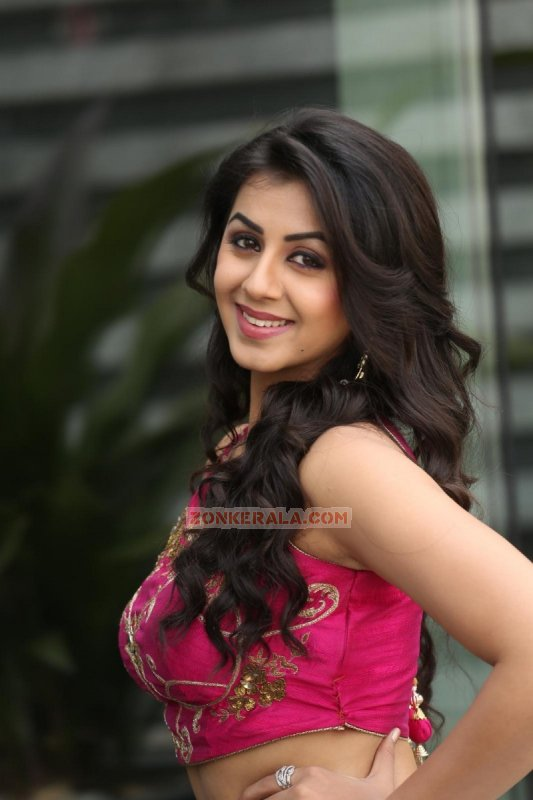 Mar 2016 Wallpapers Nikki Galrani Cinema Actress 9567