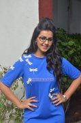 New Gallery Cinema Actress Nikki Galrani 857