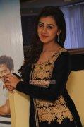 New Gallery Nikki Galrani Movie Actress 1075