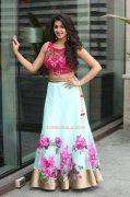 New Gallery Nikki Galrani Movie Actress 8257