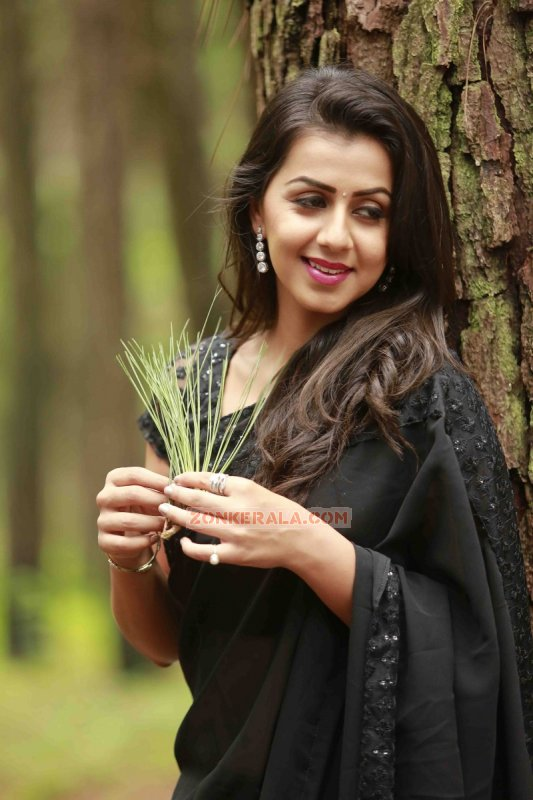 New Photo Nikki Galrani Movie Actress 5376