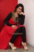 New Pic Nikki Galrani Indian Actress 8386