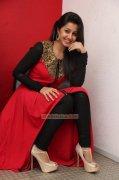 New Pic Nikki Galrani Indian Actress 8386