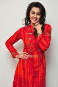 New Pics Nikki Galrani Malayalam Actress 71