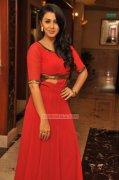 New Pics Nikki Galrani Malayalam Heroine 9929
