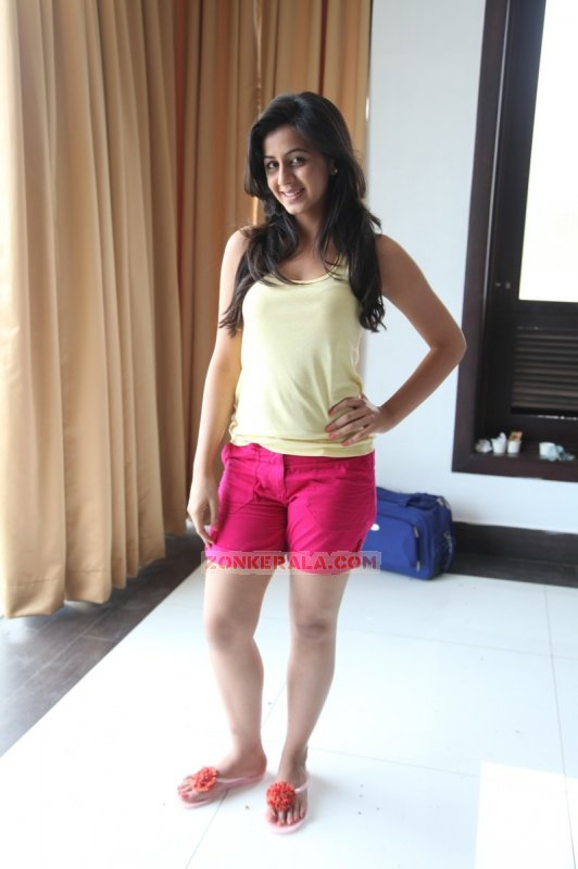 New Picture Nikki Galrani Malayalam Heroine 7194