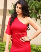 New Pictures Malayalam Movie Actress Nikki Galrani 1847