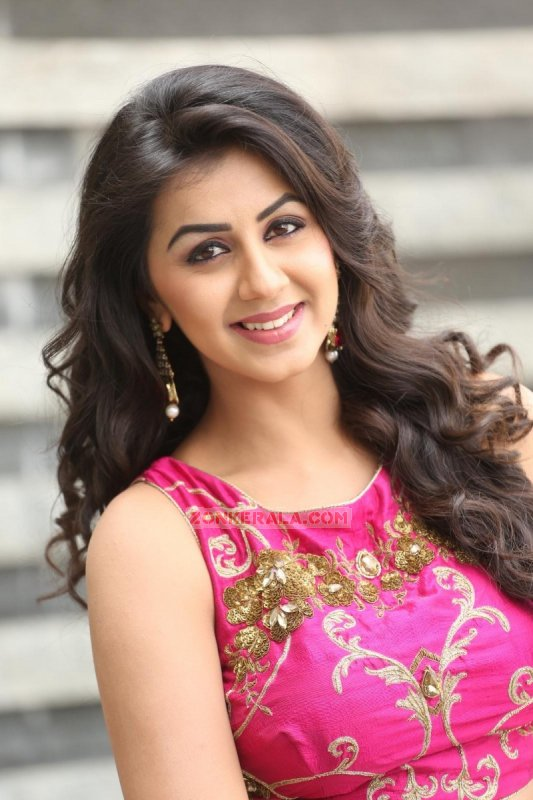 New Still Nikki Galrani Indian Actress 9443