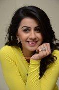 Nikki Galrani Actress New Albums 825