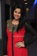 Nikki Galrani Film Actress Images 5883