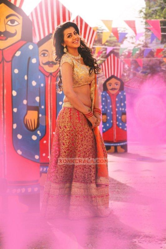 Nikki Galrani Film Actress Jun 2016 Pics 2269