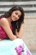 Nikki Galrani Film Actress Latest Images 2092