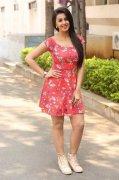Nikki Galrani Heroine Latest Pics 7722