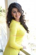 Nikki Galrani Indian Actress Image 5290