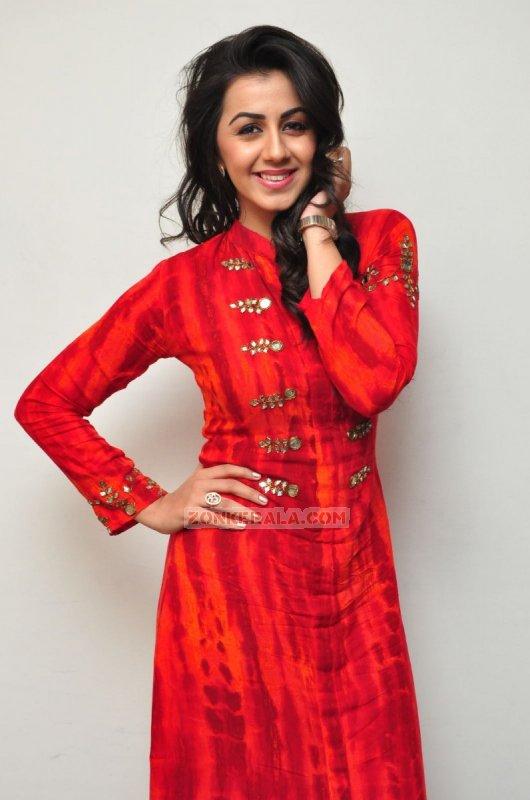 Nikki Galrani Indian Actress Latest Still 7589