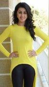 Nikki Galrani Malayalam Movie Actress Jul 2020 Pics 4502