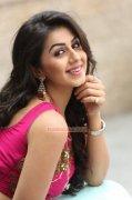 Nikki Galrani Malayalam Movie Actress Recent Album 8187