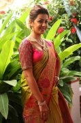 Nikki Galrani Movie Actress 2020 Album 7803