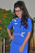Nikki Galrani Movie Actress Images 9291