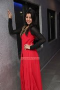 Nikki Galrani Movie Actress Jan 2015 Stills 3934