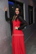 Nikki Galrani Movie Actress Jan 2015 Stills 3934